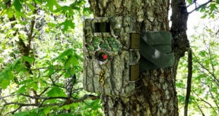 browning-recon-camo-trail-cam-l