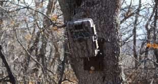 browning-recon-force-trail-camera-l