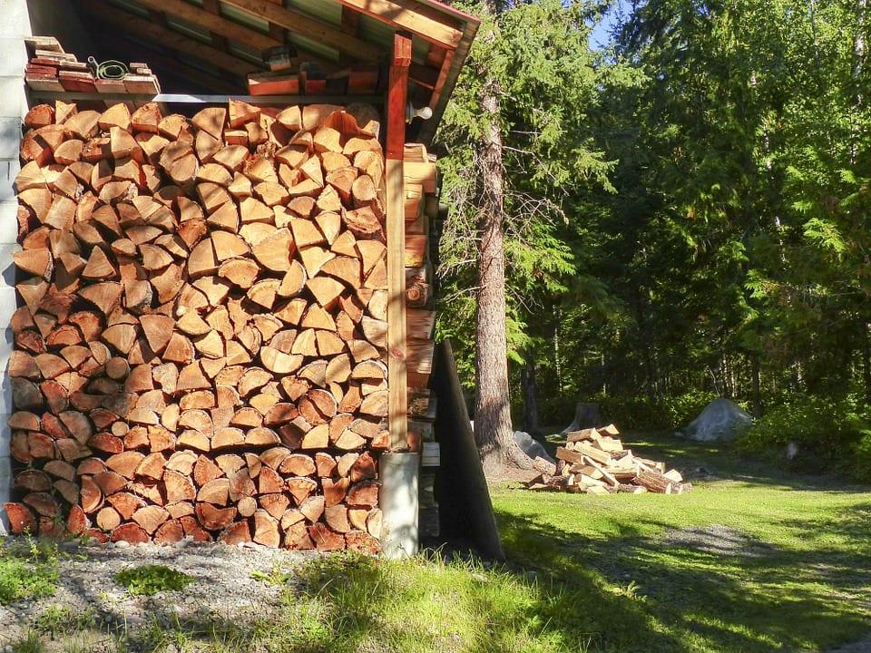 Jak vybírat dřevo na zátop