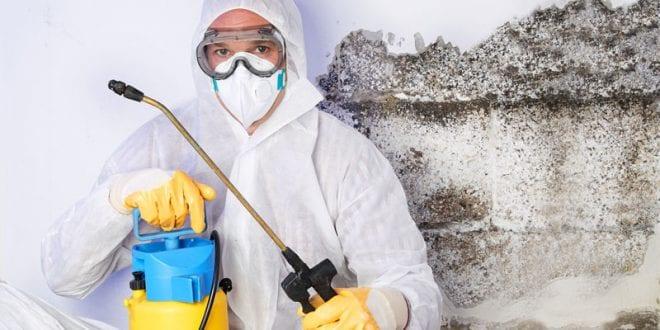 Deratizace, dezinfekce a dezinsekce. Víte, koho máte na jaký úklid vlastně volat?