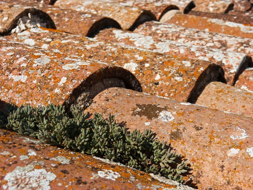 roof-1003472_960_720