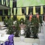 Vertikální zahrada je skvostnou ozdobou interiéru